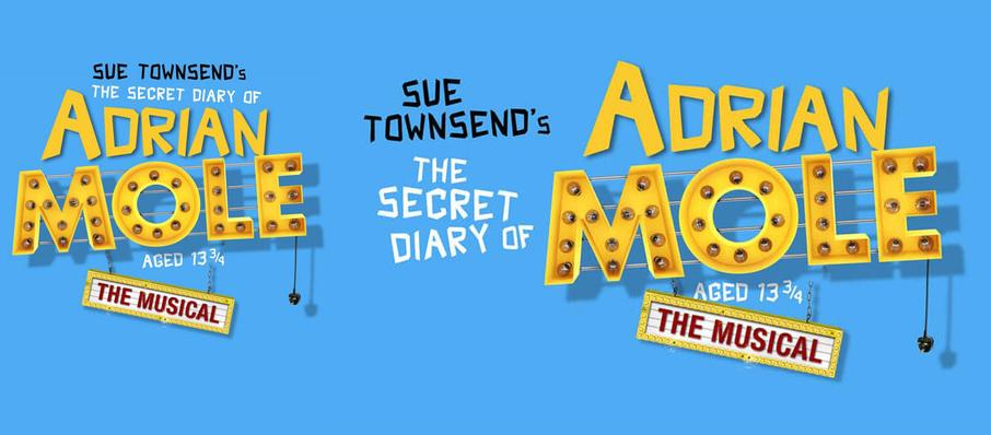 The Secret Diary of Adrian Mole Aged 13 3 4, Ambassadors Theatre, London