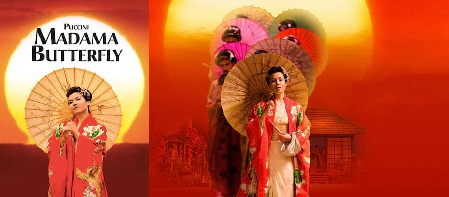 Ellen Kents Madama Butterfly, New Wimbledon Theatre, London